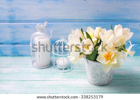 White daffodils and tulips  flowers in bucket and candles  on turquoise  painted wooden planks. Selective focus. Place for text.  - stock photo