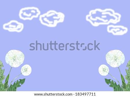 white dandelions against a blue sky - stock photo