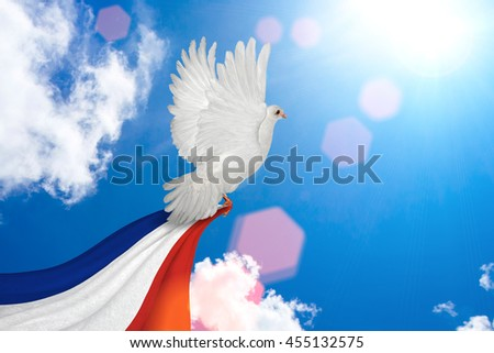 White Dove holding France flag Flying on blue sky to independence and freedom concept - stock photo