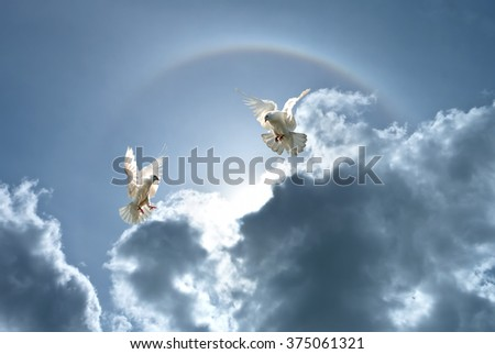 White doves against clouds and rainbow concept for freedom, peace and spirituality - stock photo