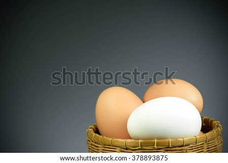 White duck egg in the basket with vignette and spacing for text - stock photo