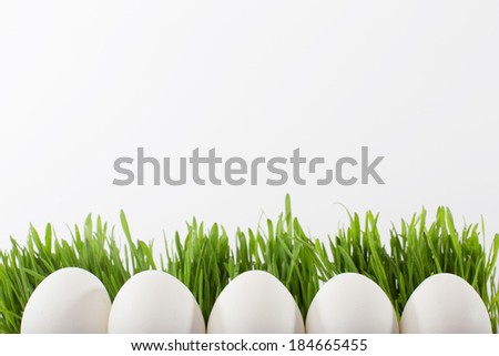 white easter eggs in the grass