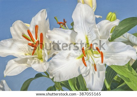 White Easter lilies photographed against blue sky,photo art