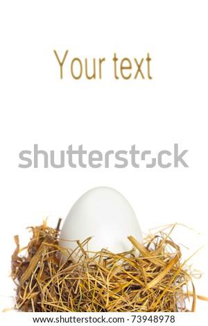 White egg in the nest - stock photo