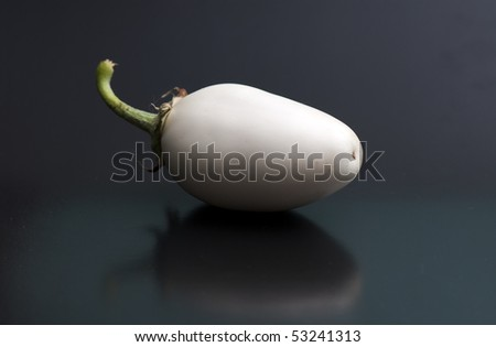 white egg-plant on the white isolated background