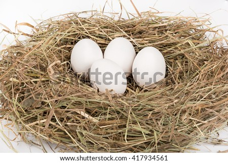White eggs in nest of straw. On white background