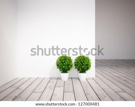 white empty interior with two plants - stock photo