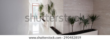 White exclusive hallway with exotic floral decorations
