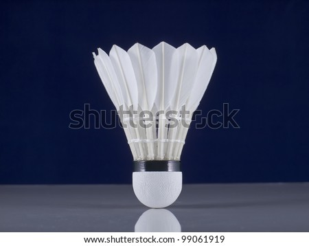 white feather shuttlecock - stock photo