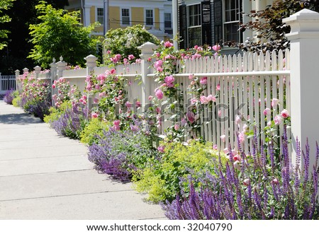 White fence with flowers. Pink roses, blue sage, purple catmint, green and yellow lady's mantel. Colorful and elegant. - stock photo