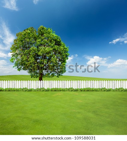 White fences on green grass and a big tree behind - stock photo