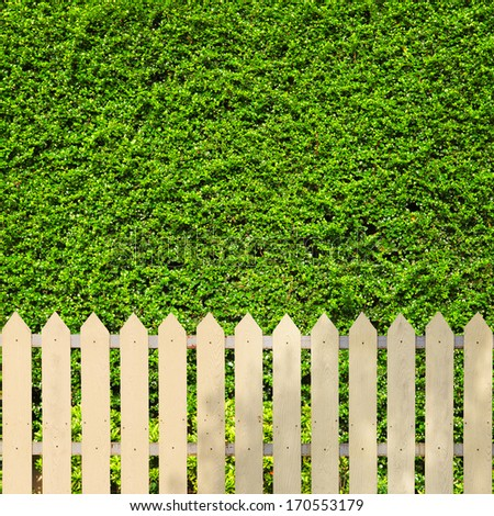 White fences with green leaves background - stock photo