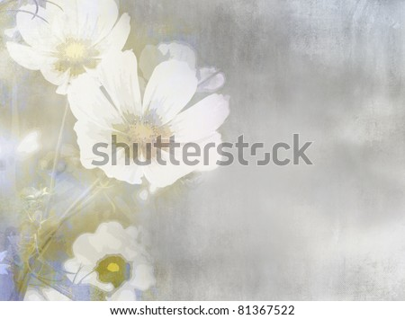 White field flower in soft water color painting style on grunge background with grey, blue and beige paper texture - vintage floral design - stock photo