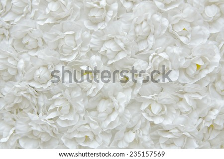 white flower of the fabric, floral background - stock photo