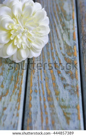 White flower on old wood board