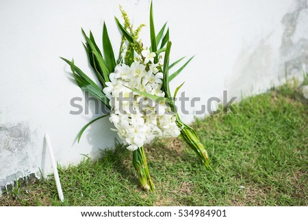 White flower put between wall ground stock photo royalty free white flower put between wall and ground for mourn over some persons death mightylinksfo