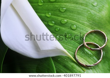 white flower with green leaves and wedding rings close up - stock photo