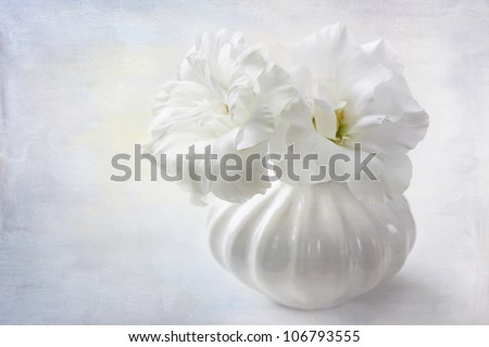 White flowers in a vase - stock photo
