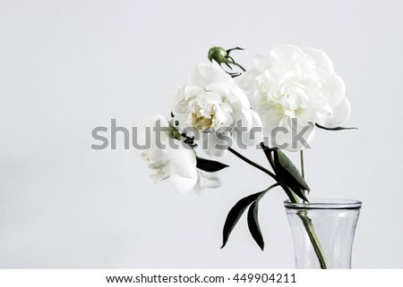 white flowers in glass vase  - stock photo