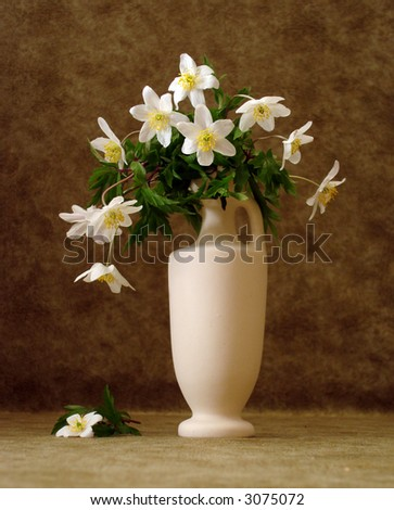 white flowers in vase over brown background - stock photo