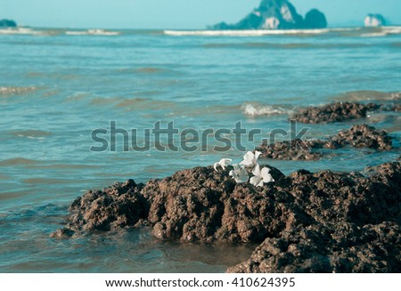 white flowers on rough stone against blue sea - stock photo