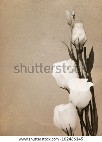 White flowers on textured background with copy space for vintage card - stock photo