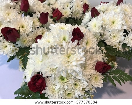 White Flowers Represent Pure Love Crimson Stock Photo Royalty Free