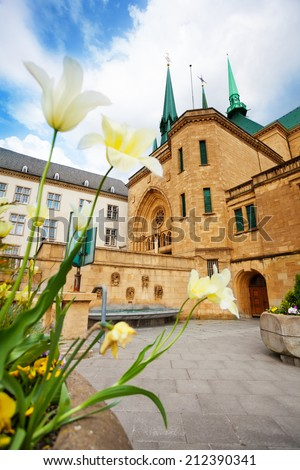 White flowers view with Notre-Dame Cathedral - stock photo