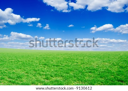 white fluffy clouds and a green spring field