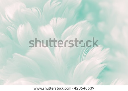 White fluffy feather closeup - pale Tiffany blue to robin egg greenish color background - and new coming Jade Evanescence color of Fashion Color Trends - Spring Summer 2017 - stock photo