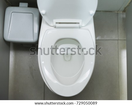 White flush toilet in bathroom, interior design