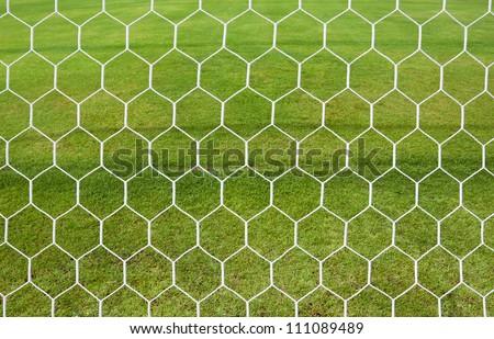 white football net, green grass - stock photo