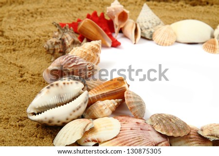 white frame from shells and sand on the beach