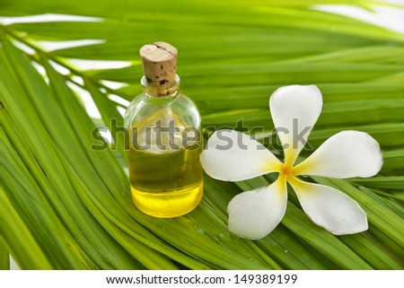 White frangipani and massage oil on palm leaf - stock photo