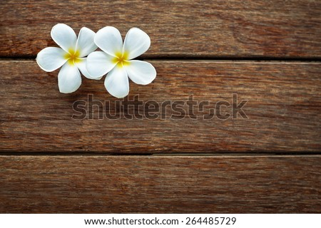 White frangipani on wooden background, spa background  with lot of copy space for text  - stock photo