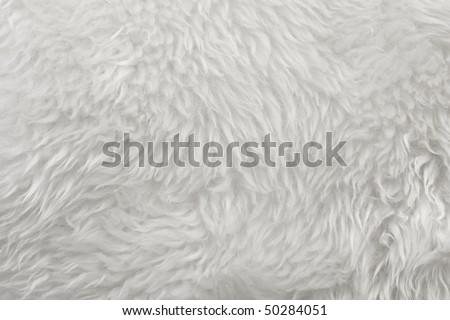white fur - stock photo