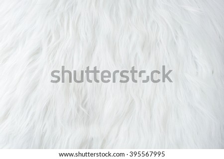 White fur texture, close-up.Useful as background - stock photo