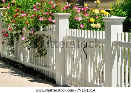 White Gate with Yellow, Pink and Red Roses - stock photo