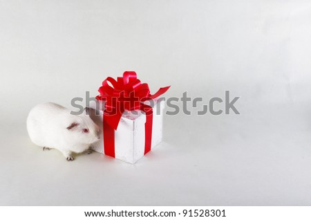 white gift box with red ribbon - stock photo