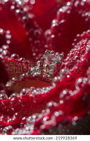 White gold diamond ring in Red rose taken closeup with water bubbles - stock photo
