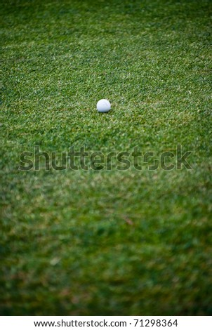White golf ball against the green grass
