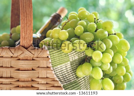 White grapes cascading from a basket with bottle of wine.  Background is sunlit summer foliage in soft focus.  Close-up with shallow dof. - stock photo