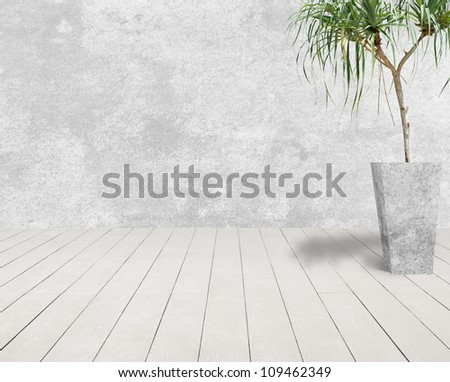 white grunge cement wall and white wood floor with tree in cement pot. - stock photo