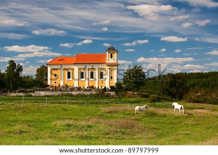 White horses on the pasture near the church - stock photo