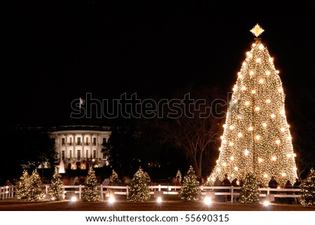 White House and the National Christmas Tree in Washington DC - stock photo