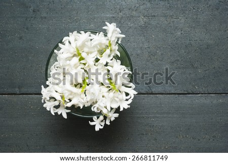 white hyacinth flowers on black wooden table - stock photo