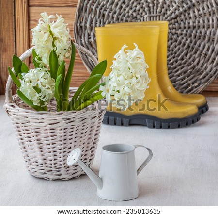 White hyacinths in a basket on a background of yellow  rubber boots - stock photo