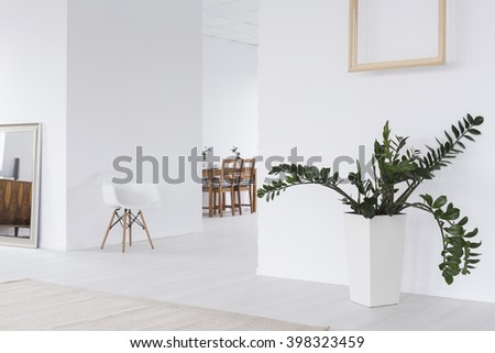 White interior with mirror, new chair, wood frame hanging on wall and plant in decorative pot - stock photo