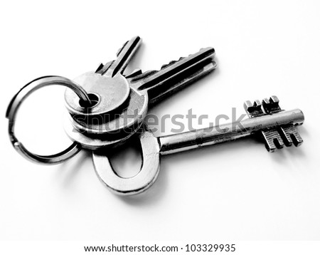 White isolated keys - stock photo