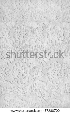 white lace - stock photo